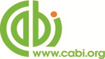 library_b91c7_cabi.png